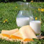 дистрибуция на млечни